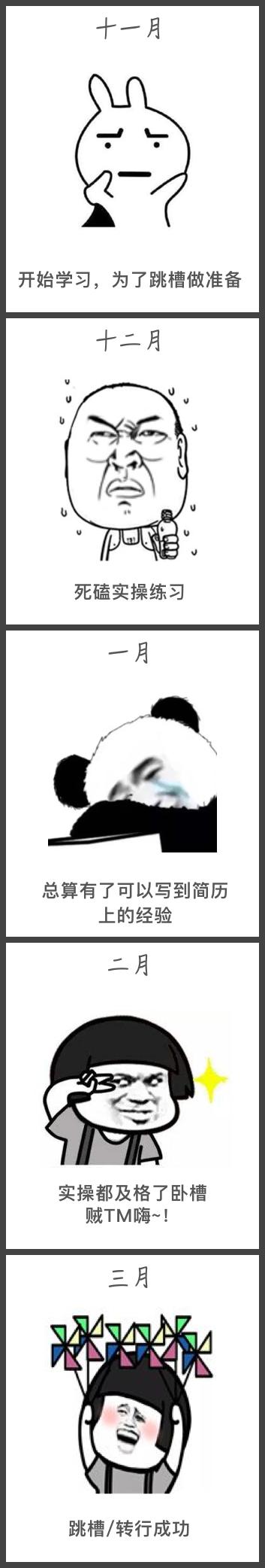 涛哥转行表情包.jpg