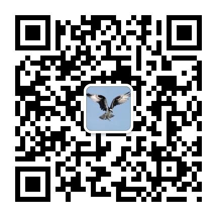 qrcode_for_gh_4d6331699f82_430.jpg